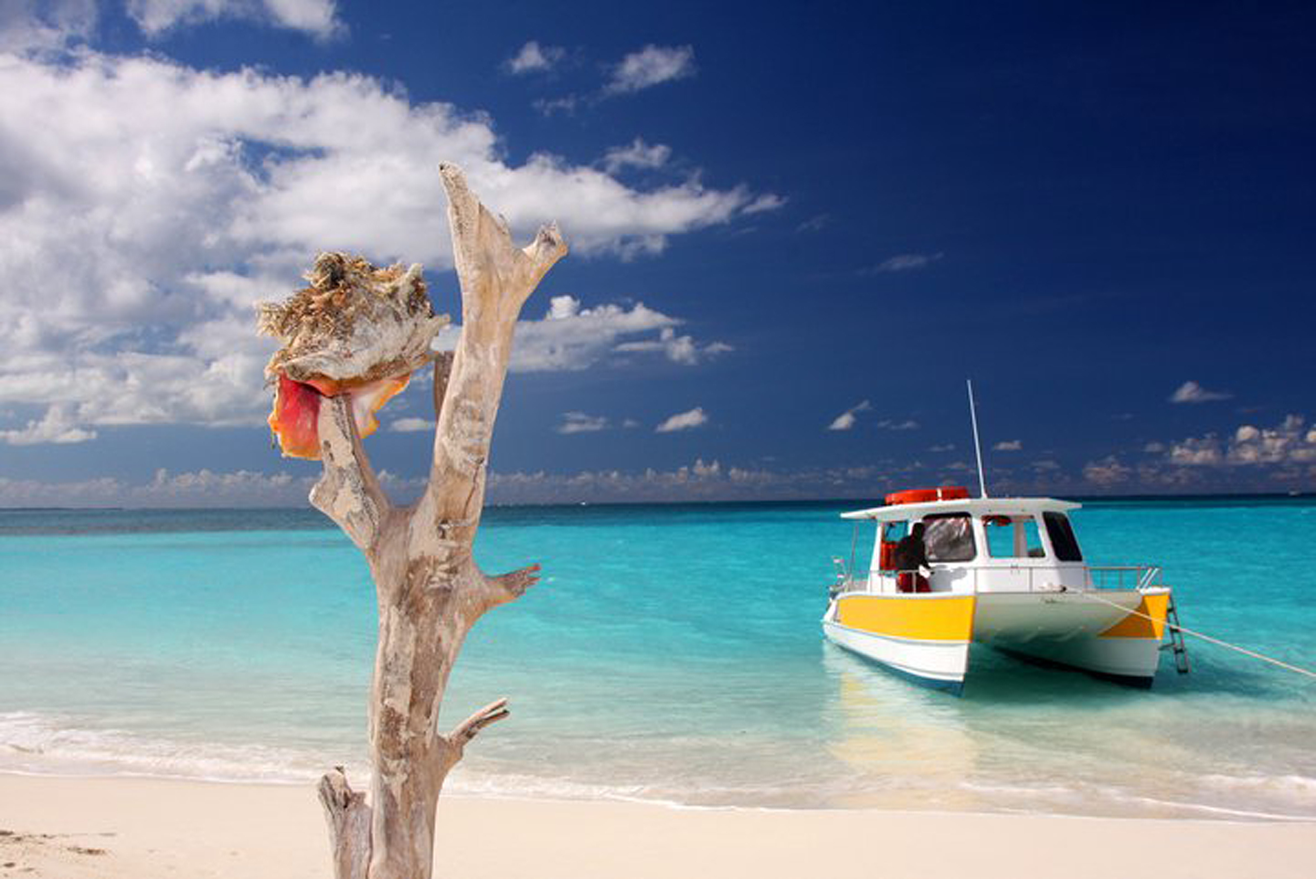 Caicos Dream Tours