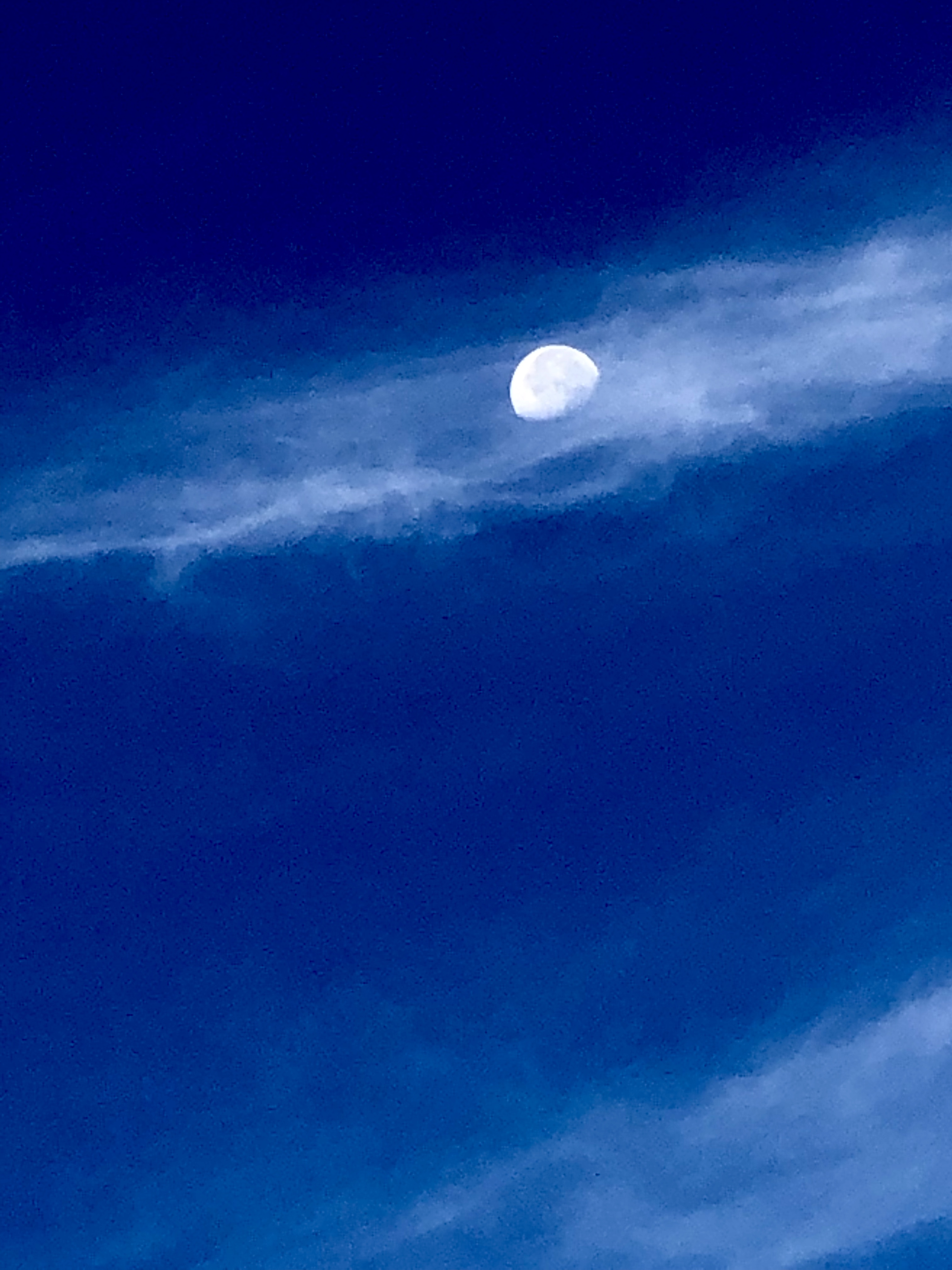 The Moon!  (taken by iphone)